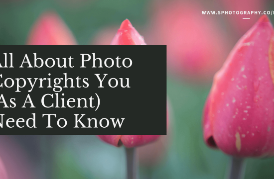 S Photography Blog All About Photo Copyrights You (As A Client) Need To Know
