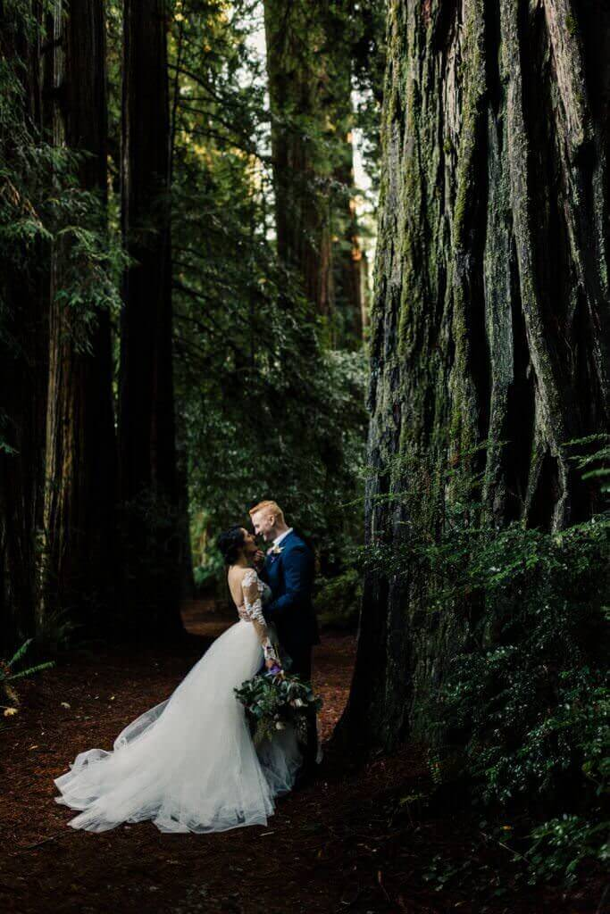 Redwoods-Adventure-Elopement-California