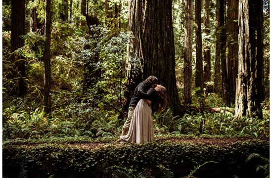 Jedediah-Redwoods-Adventure-Engagement-Elopement-Session-California