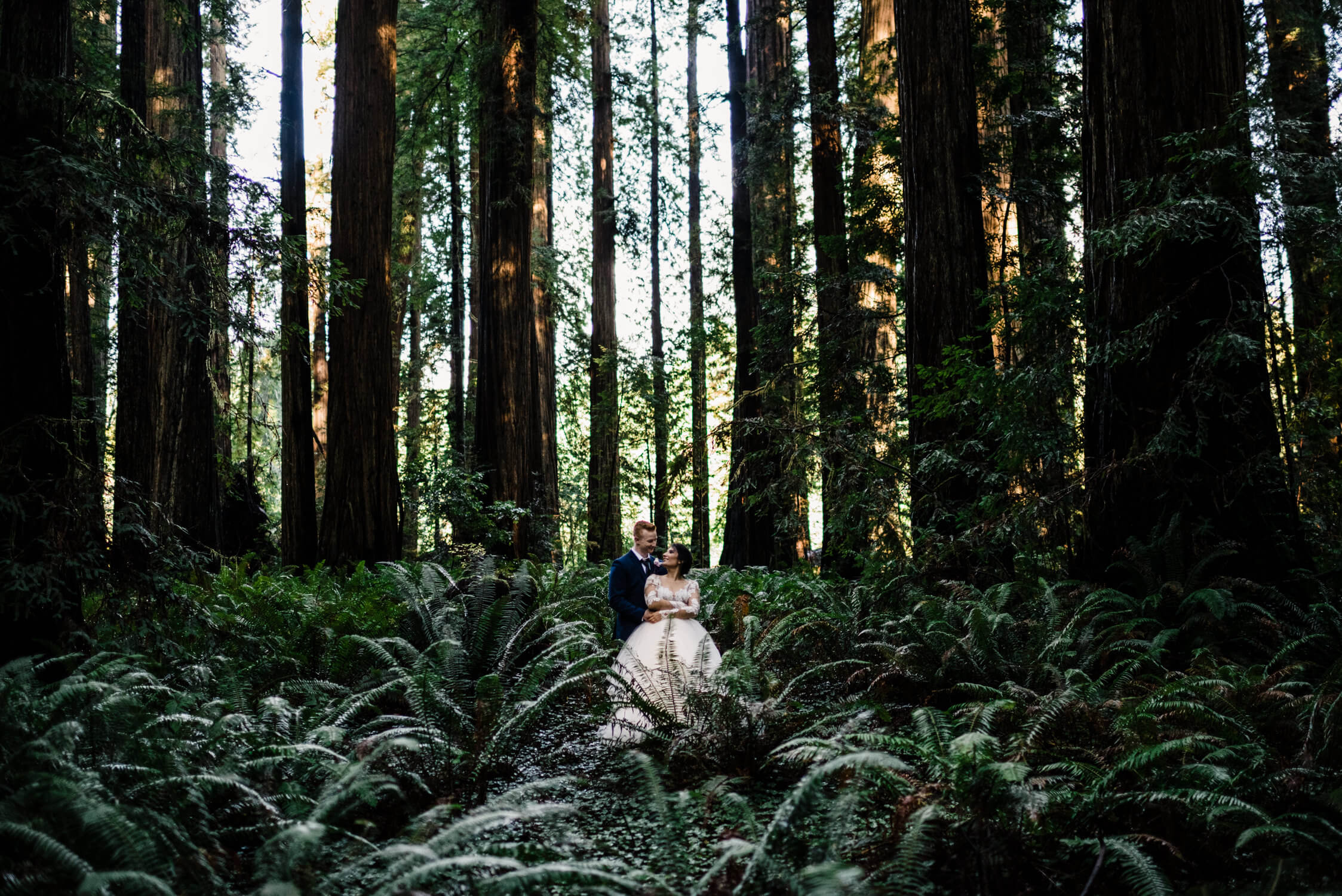 Adventure elopement photographer, redwoods elopement photographer