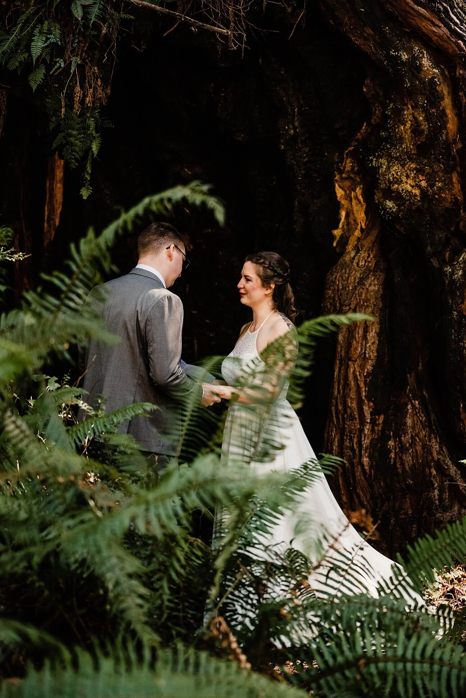 S Photography,avenue of the giants,california,elope,elopement,intimate wedding,jedediah smith,national park,norcal,prairie creek,redwoods,small wedding,state park,