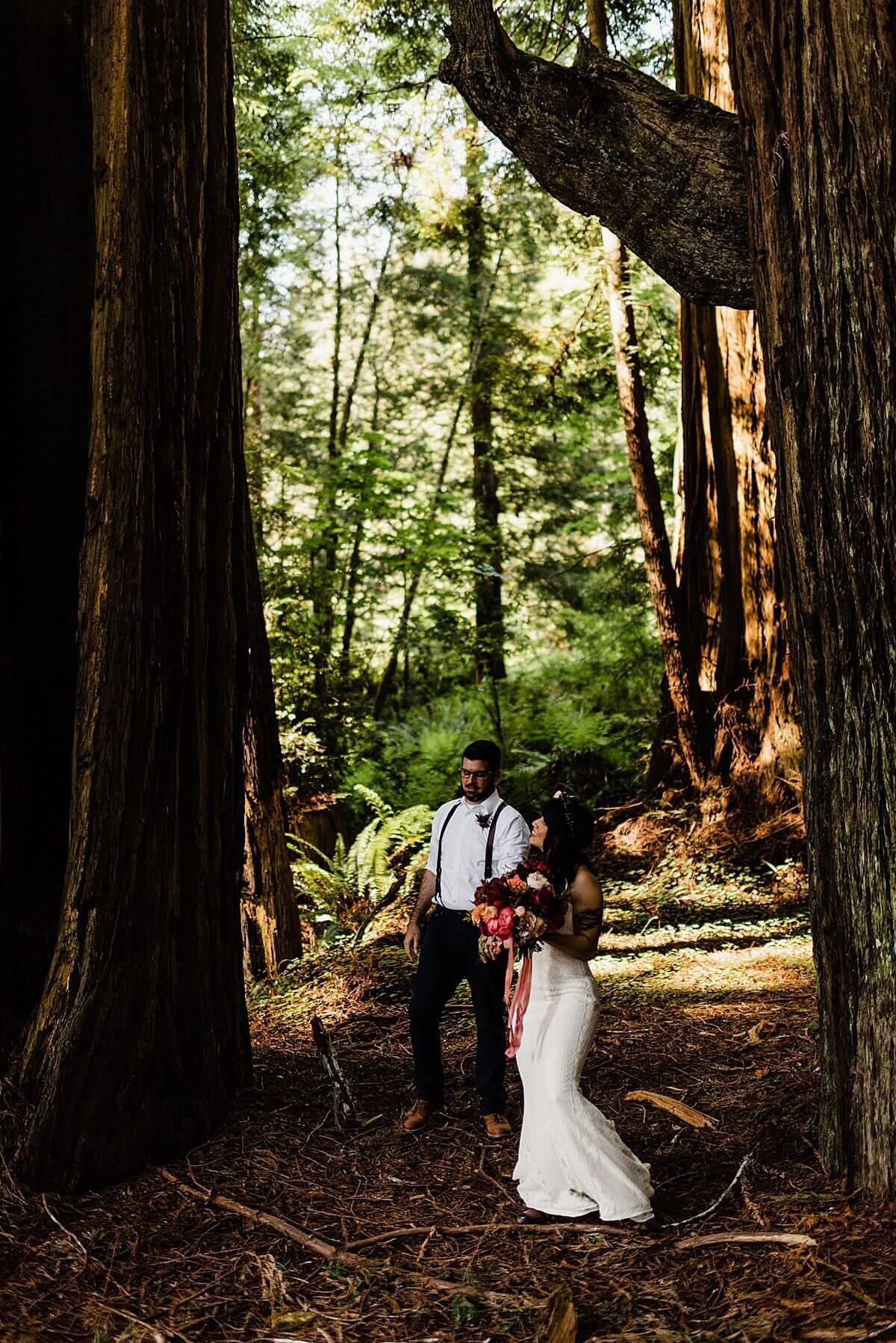 Allison-Brooks-Jedediah-Smiith-Redwoods-Adventure-Elopement-Wedding-S-Photography-Blog_0003.jpg
