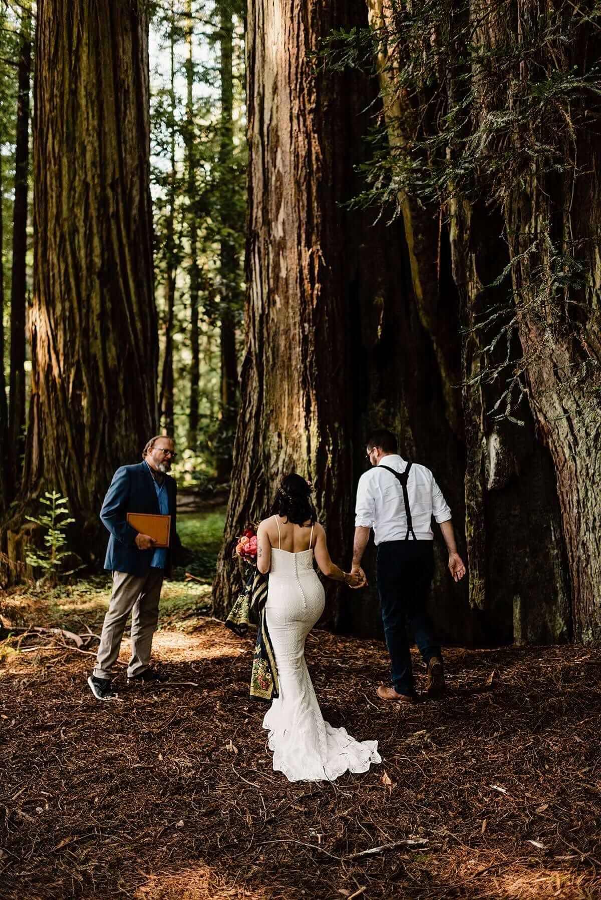 Allison-Brooks-Jedediah-Smiith-Redwoods-Adventure-Elopement-Wedding-S-Photography-Blog_0014.jpg
