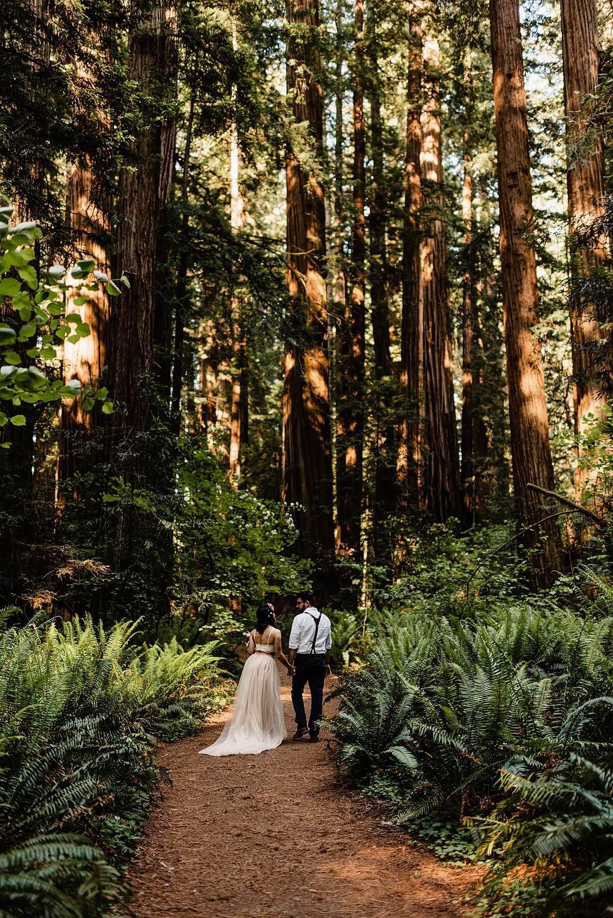 Allison-Brooks-Jedediah-Smiith-Redwoods-Adventure-Elopement-Wedding-S-Photography-Blog_0031.jpg