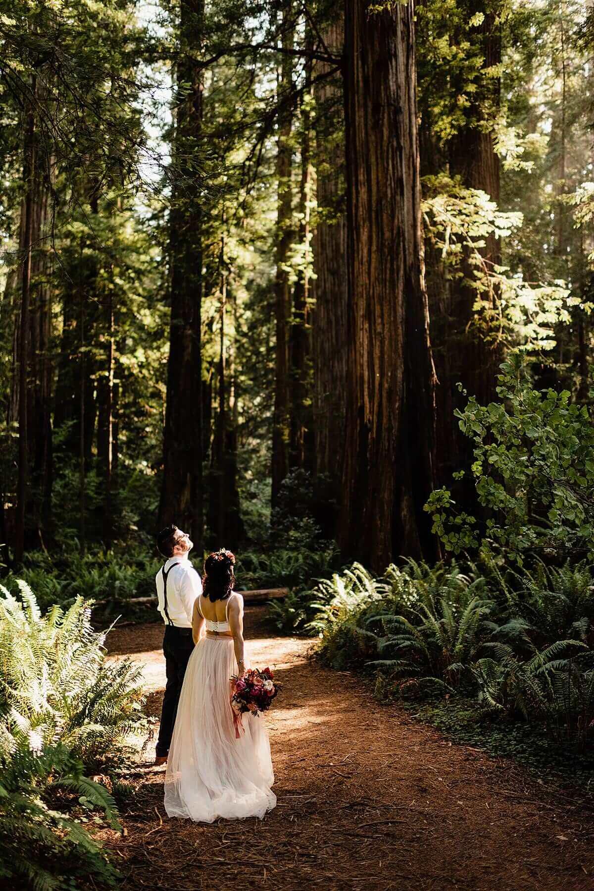 Allison-Brooks-Jedediah-Smiith-Redwoods-Adventure-Elopement-Wedding-S-Photography-Blog_0040.jpg