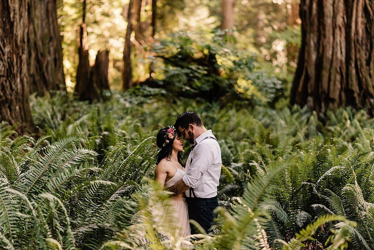Allison-Brooks-Jedediah-Smiith-Redwoods-Adventure-Elopement-Wedding-S-Photography-Blog_0049.jpg
